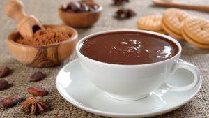 Read more about the article Theobroma. Il cioccolato dagli Dèi agli Uomini…